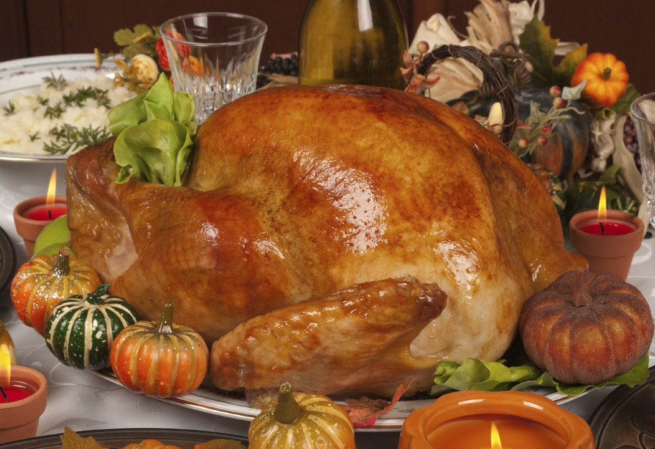 Problems With Thanksgiving Economics