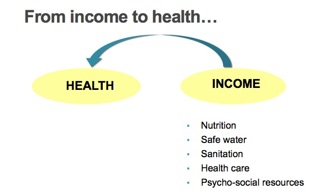 Positive Externalities vaccinations, income and health